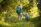 inhaltsgalerie-0_-25a7210-small__289a01ed